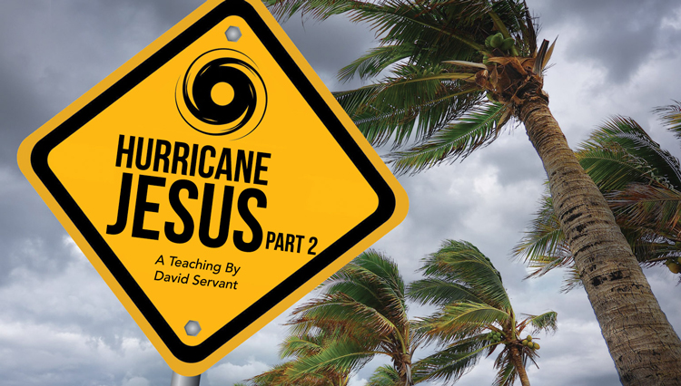picture of sign, 'Hurricane Jesus,' in front of blowing palm trees