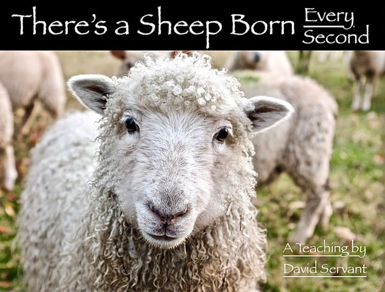 """There's a Sheep Born Every Second"" - An e-Teaching by David Servant"