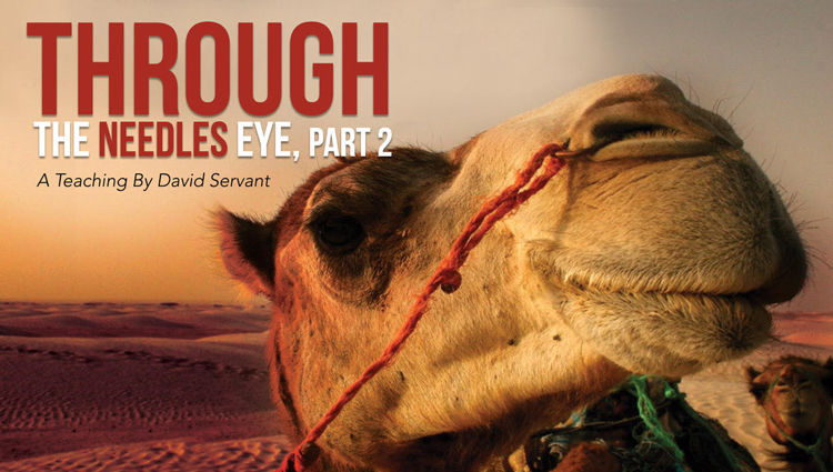banner for through the needle's eye, chapter one