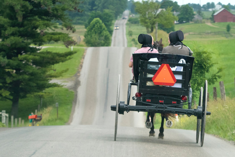 Picture of Amish Christians in buggy