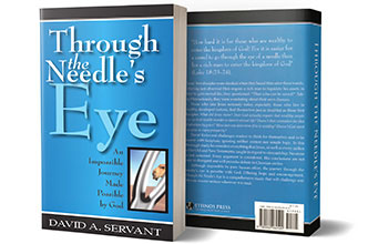 Picture of David's book, Through the Needle's Eye