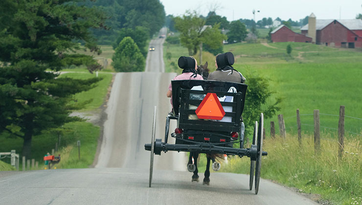 women riding a buggy