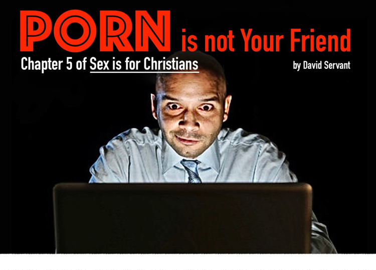 Porn Is Not Your Friend by David Servant